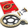 Chain and sprockets kit Ducati Monster 1100 Regina