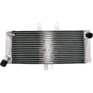 Radiatore motore per Suzuki GSF 1250 Bandit acqua grigio