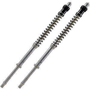 Fork cartridge Aprilia RS4 125 Matris F20K pair