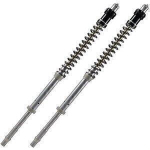 Fork cartridge Aprilia RSV4 1000 R -'10 Matris F20K pair