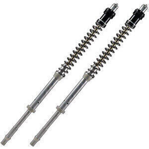 Fork cartridge Aprilia RSV4 1000 R 11'- Matris F20K pair
