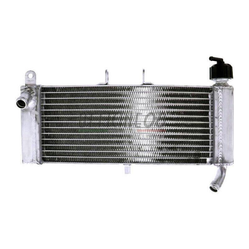Radiatore motore per Aprilia RS4 125 acqua grigio