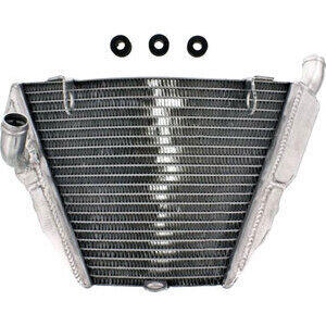 Engine cooler Ducati Streetfighter water low