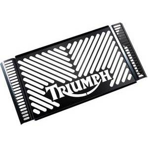 Radiator cover Triumph Speed Triple 1050 -'10