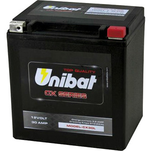 Batteria di accensione Yuasa 53030 12V-30Ah